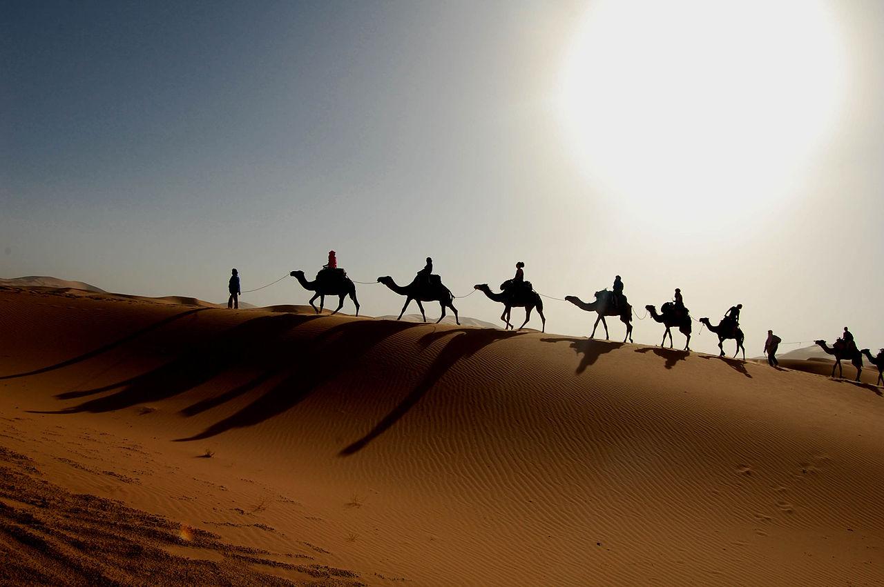 Maroc - caravane dans le sud Sahara