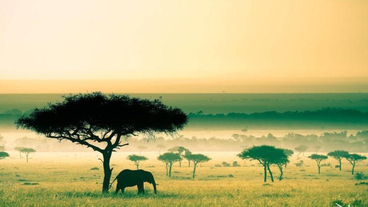 Kenya : +10 millions d'habitants en 10 ans