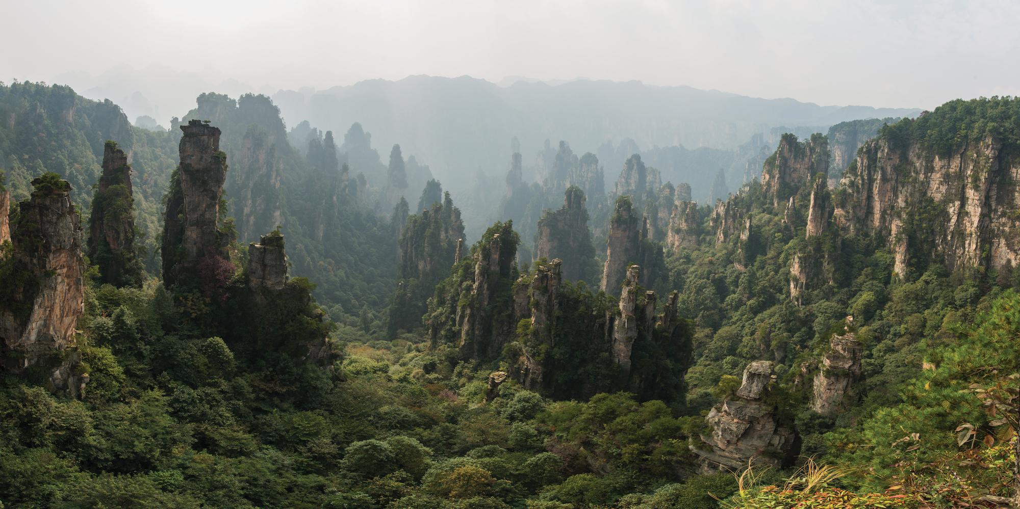 Parc national de la forêt Zhangjiajie, Chine