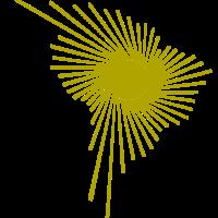 Alliance bolivarienne pour les Amériques (ALBA)