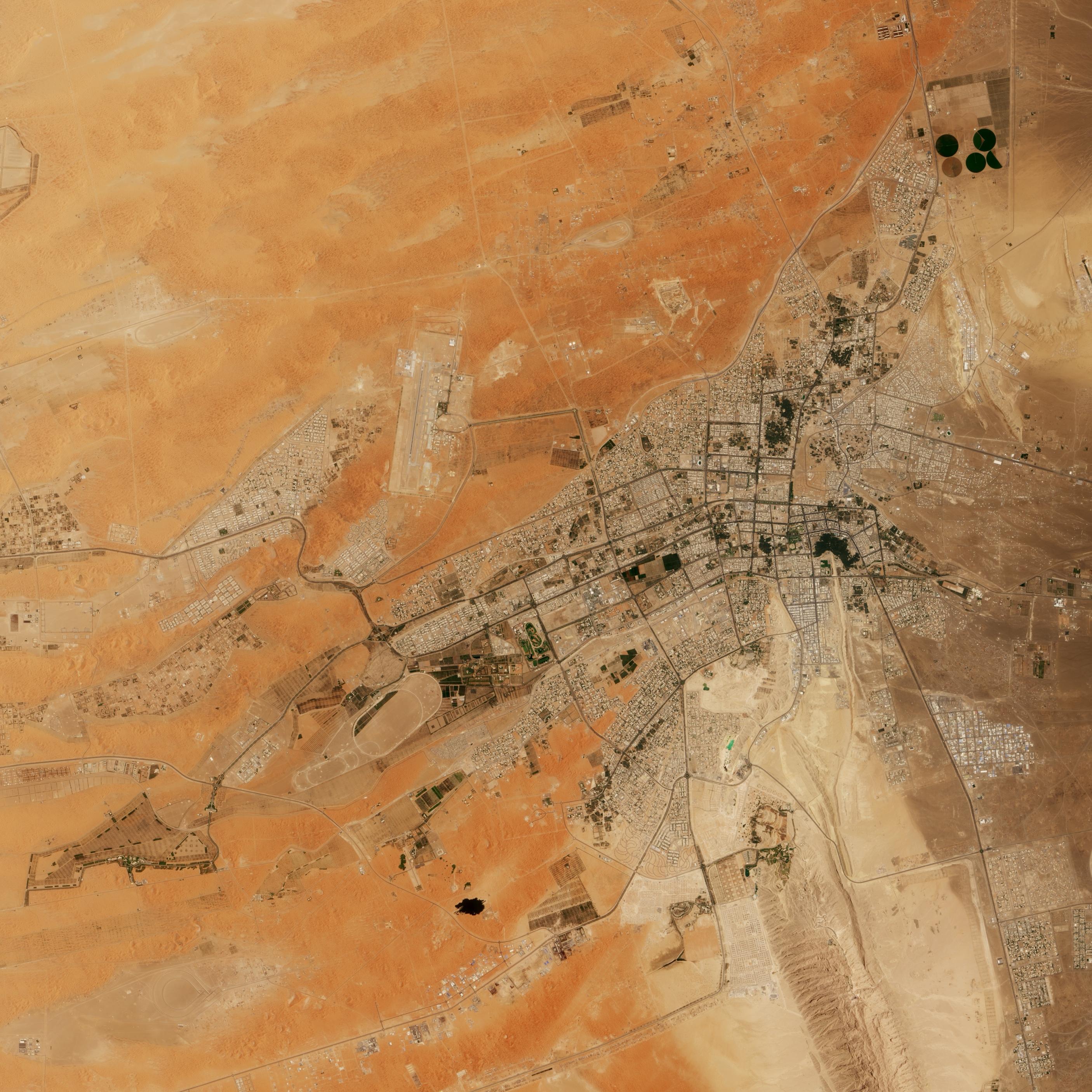 Al-Aïn - oasis au coeur du désert. Émirats arabes unis
