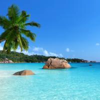 Seychelles : paradis terrestre menacé