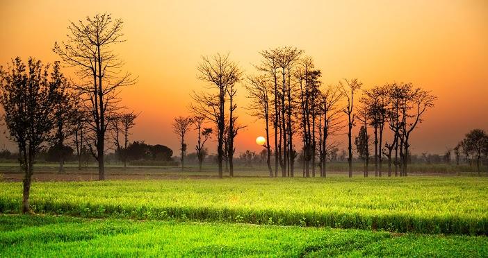 Couché de soleil sur la campagne du Pakistan