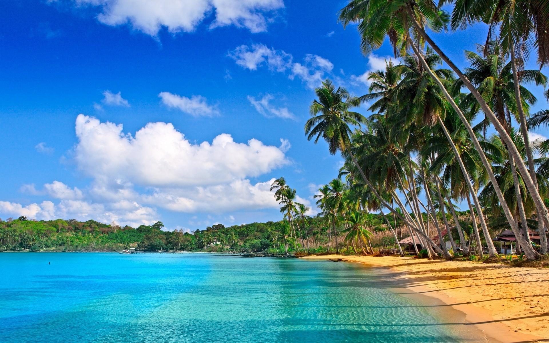 Plage à la Barbade