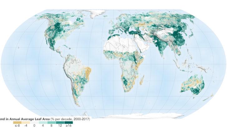 Le monde a verdi depuis 2000