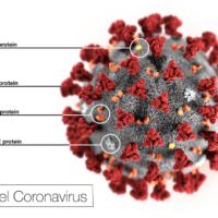 L'OMS déclare le coronavirus urgence de santé publique internationale