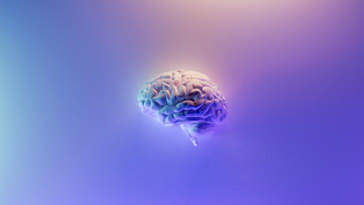 Les neurosciences dans votre smartphone afin de lutter contre le stress