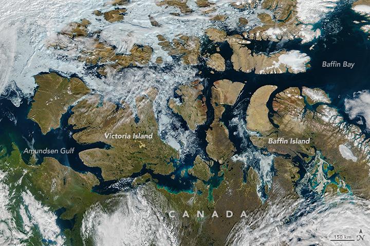 Canada - glaces dans le passage du nord-ouest (août 2016)