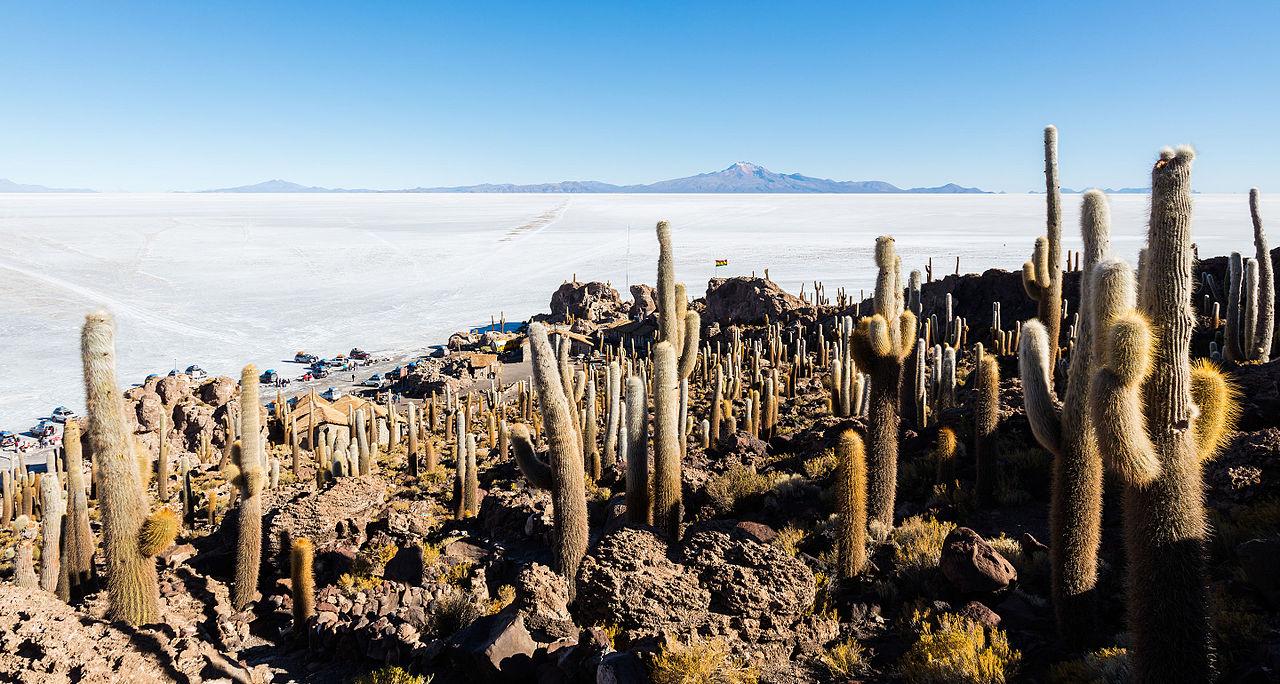 Incahuasi, Salar d'Uyuni, Bolivie