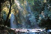 22 nouvelles réserves de biosphère dans 17 pays