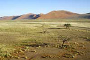 Lutte contre la désertification