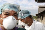 Grippe A : 3 milliards de vaccins par an
