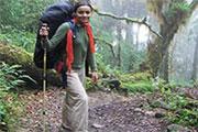 Tourisme en 2004