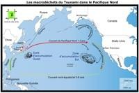 Immense plaque de déchets dans le Pacifique