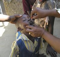 Polio : 50 millions d'enfants vaccinés en Afrique de l'Ouest
