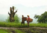 RDC : les cas de viol se multiplient au Sud-Kivu